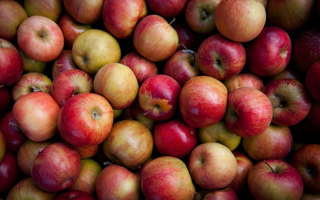 numerous red and yellow apples